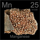 Manganese Supplements