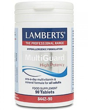 Lamberts Multi Guard 90 tablets