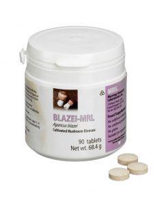 Mycology Research Blazei MRL 500mg 90 tablets